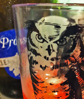 owls-wink